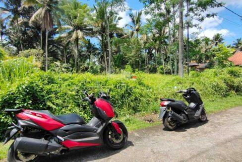Land-for-sale-Ubud-FH-1263-f