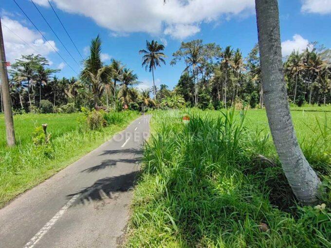 Land-for-sale-Ubud-FH-1265-b
