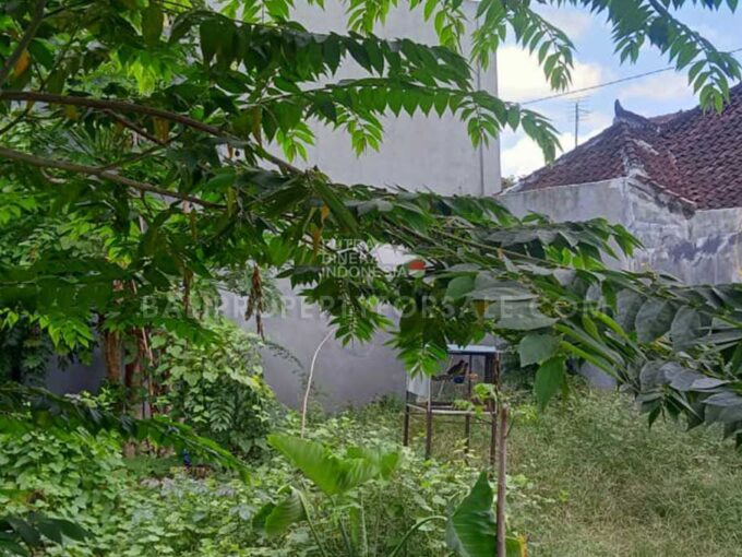 Land-for-sale-Canggu-FH-1370-b