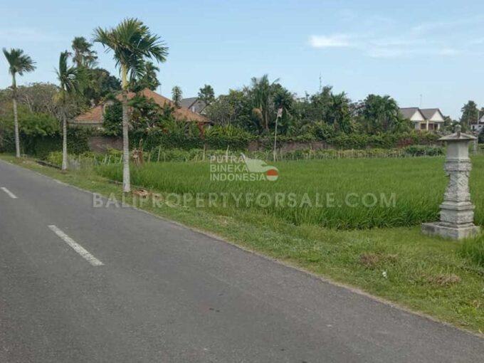 Land-for-sale-Cemagi-FH-1300-c