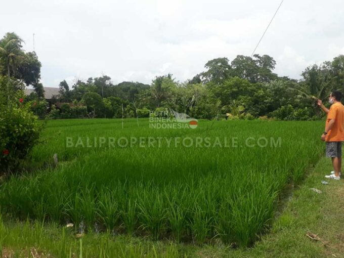 Land-for-sale-Tabanan-FH-1412-d