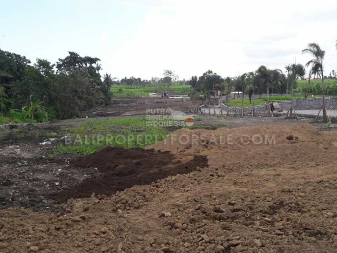 Land-for-sale-Pererenan-FH-1428-a